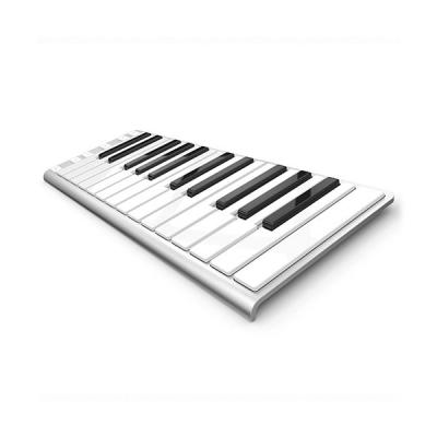 CONTROLADOR MIDI XKEY 25 NOTAS-ULTRA LIVIANO-128 NIVELES DE SENSIBILIDAD-OCTAVADOR-INCLUYE CABLE USB-COLOR BLANCO